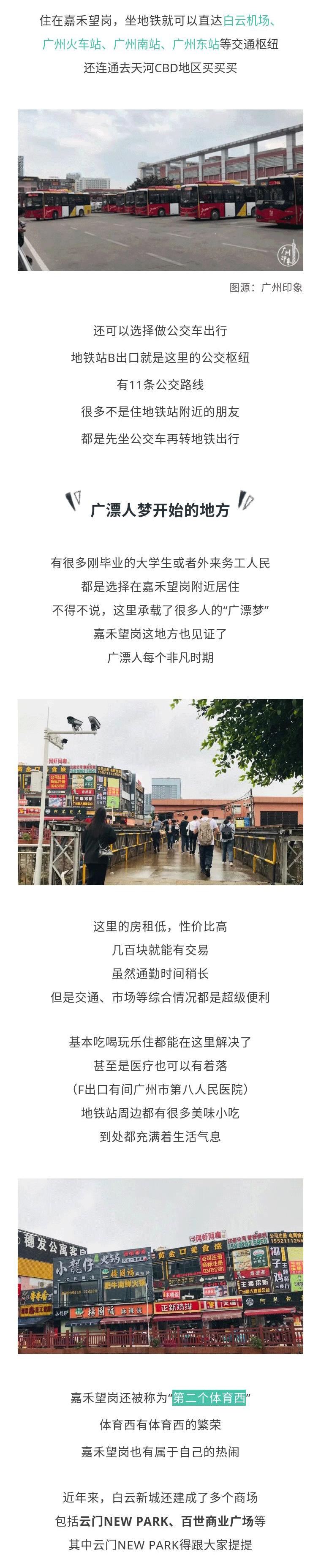 芋观园长图_03.png